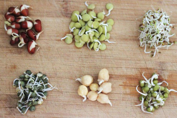 bean-sprouts-assorted_1437924117
